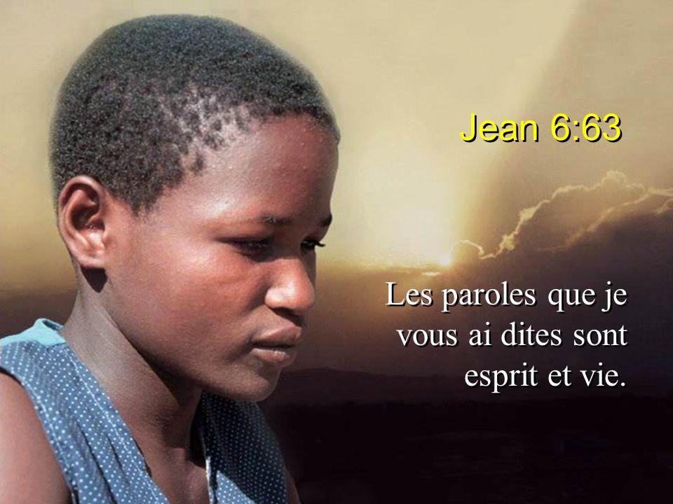 Jean 6:63 Les paroles que je vous ai dites sont esprit et vie.