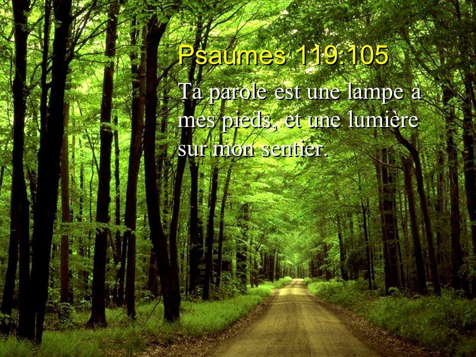Psaumes 119:105 Ta parole est une lampe à mes pieds, et une lumière sur mon sentier. Psaumes 119:105 Ta parole est une lampe à mes pieds, et une lumiè