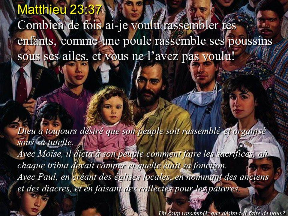 Matthieu 23:37 Combien de fois ai-je voulu rassembler tes enfants, comme une poule rassemble ses poussins sous ses ailes, et vous ne lavez pas voulu!