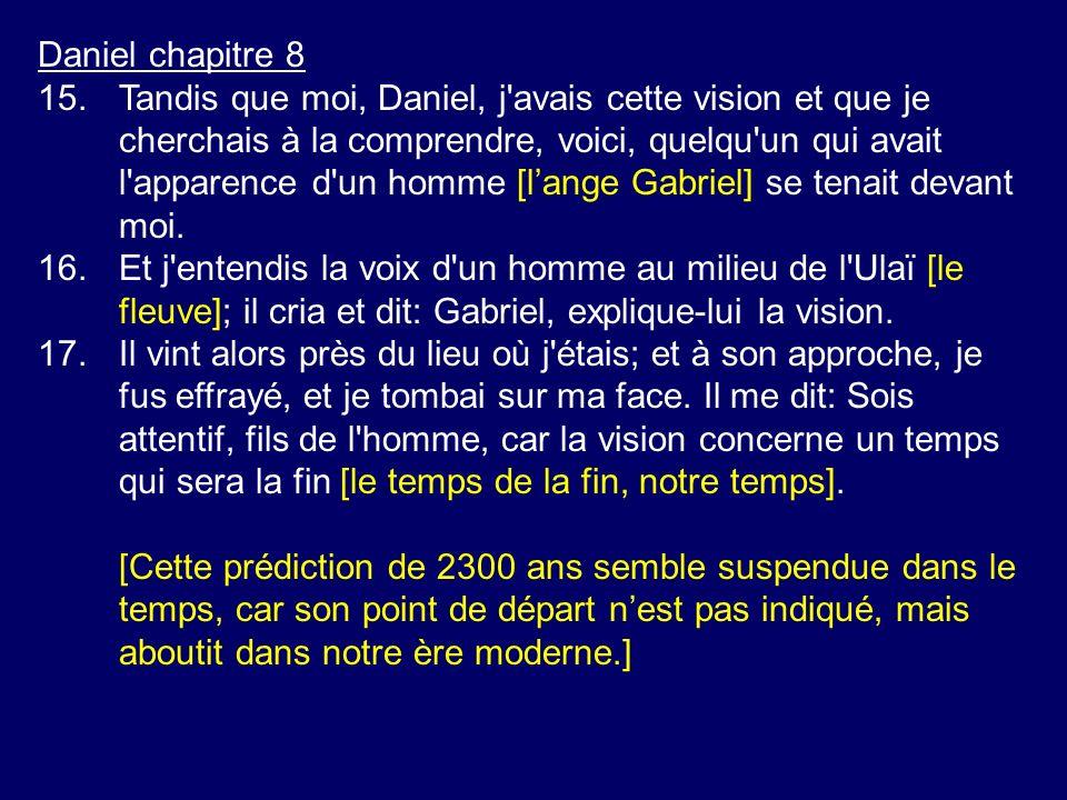 Daniel chapitre 8 15.Tandis que moi, Daniel, j'avais cette vision et que je cherchais à la comprendre, voici, quelqu'un qui avait l'apparence d'un hom