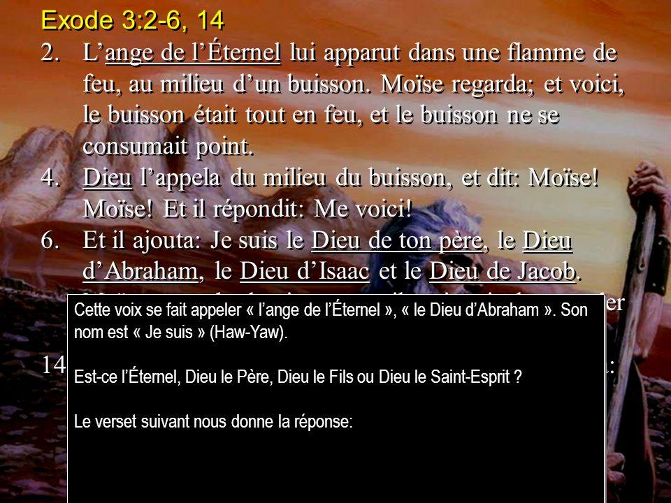 Exode 3:2-6, 14 2.Lange de lÉternel lui apparut dans une flamme de feu, au milieu dun buisson.