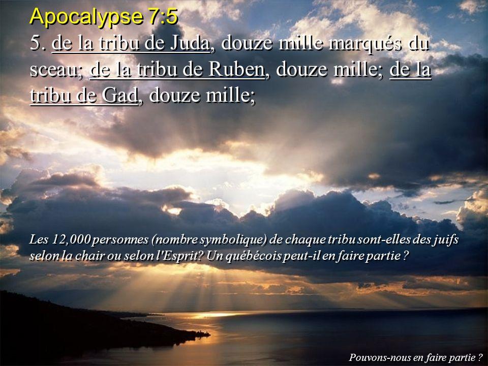 Apocalypse 7:5 5. de la tribu de Juda, douze mille marqués du sceau; de la tribu de Ruben, douze mille; de la tribu de Gad, douze mille; Les 12,000 pe