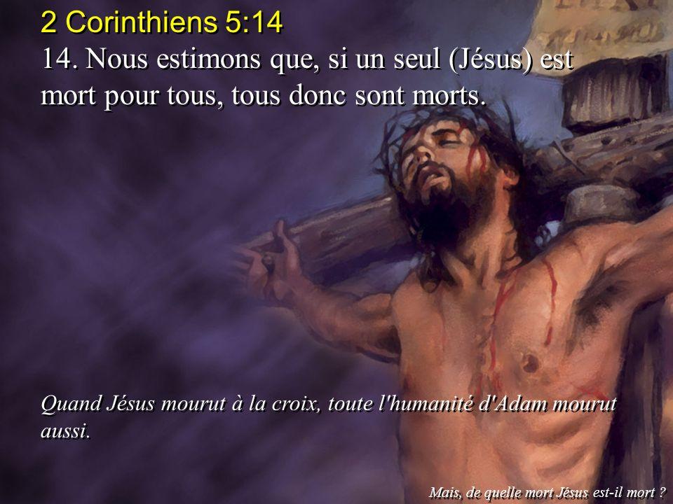 2 Corinthiens 5:14 14. Nous estimons que, si un seul (Jésus) est mort pour tous, tous donc sont morts. Quand Jésus mourut à la croix, toute l'humanité