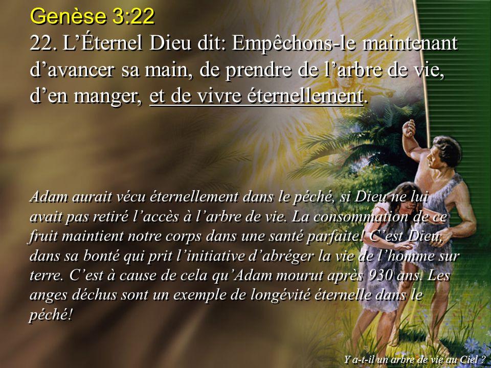 Genèse 3:22 22. LÉternel Dieu dit: Empêchons-le maintenant davancer sa main, de prendre de larbre de vie, den manger, et de vivre éternellement. Adam