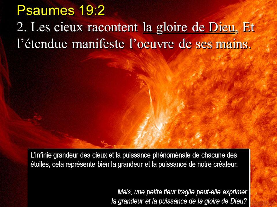 Psaumes 19:2 2. Les cieux racontent la gloire de Dieu, Et létendue manifeste loeuvre de ses mains. Psaumes 19:2 2. Les cieux racontent la gloire de Di