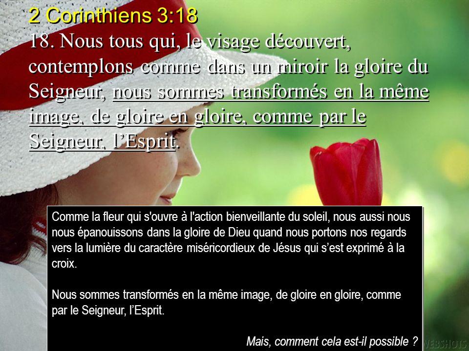 Jean 17:22 22.