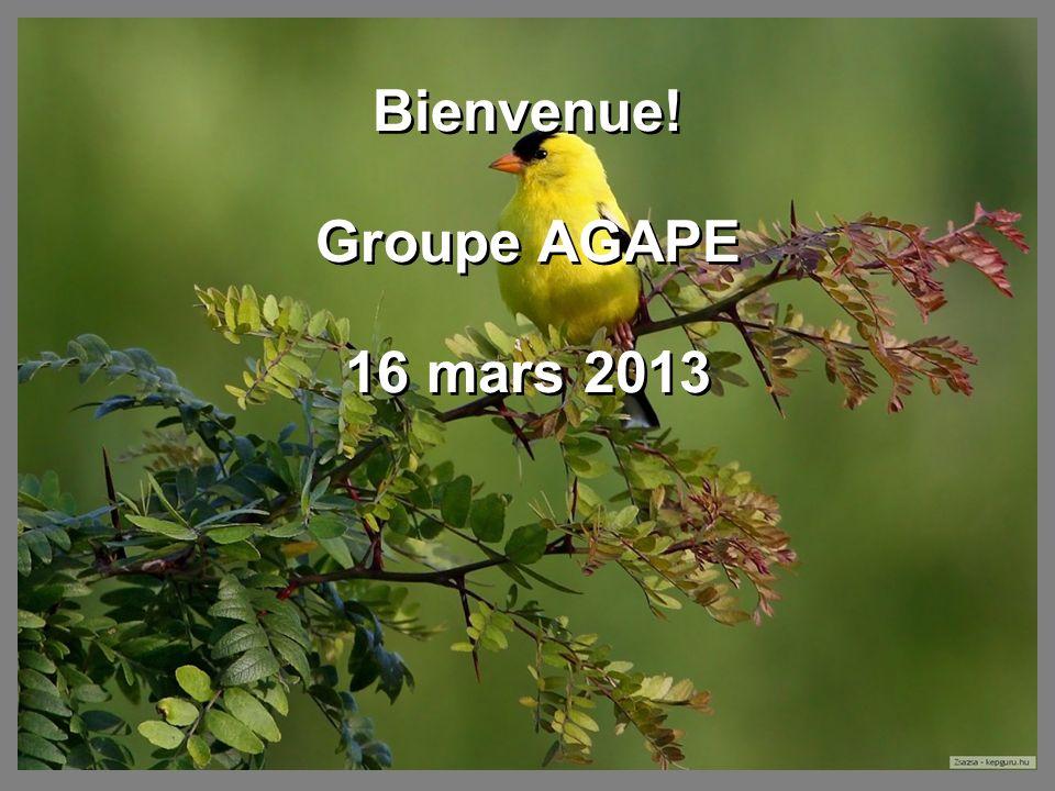Bienvenue! Groupe AGAPE 16 mars 2013 Bienvenue! Groupe AGAPE 16 mars 2013