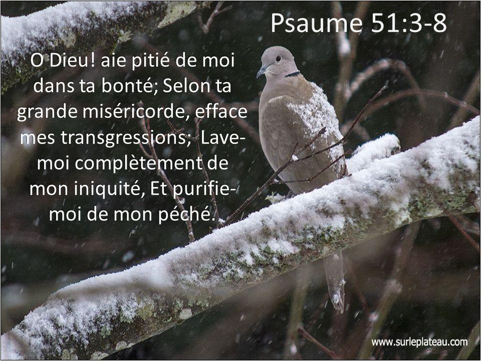 Psaume 51:3-8 O Dieu! aie pitié de moi dans ta bonté; Selon ta grande miséricorde, efface mes transgressions; Lave- moi complètement de mon iniquité,
