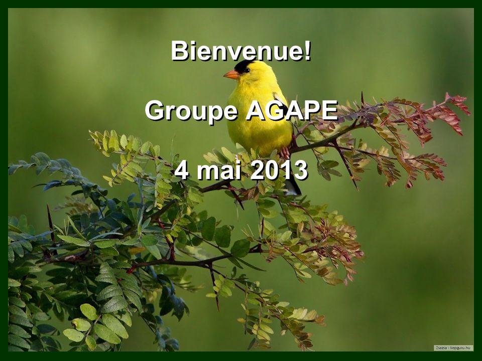 Bienvenue! Groupe AGAPE 4 mai 2013 Bienvenue! Groupe AGAPE 4 mai 2013