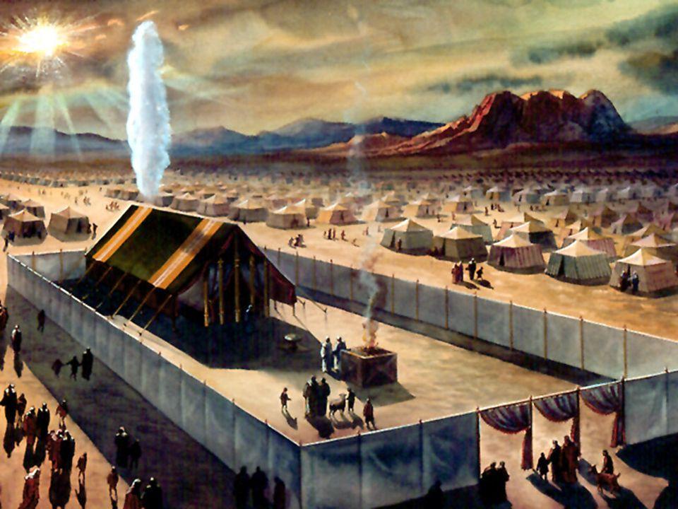 Les 144 mille Cette purification atteindra tout les fidèles et formera lÉglise de Dieu de la fin, alors Jésus reviendra dans sa gloire avec puissance.Cette purification atteindra tout les fidèles et formera lÉglise de Dieu de la fin, alors Jésus reviendra dans sa gloire avec puissance.