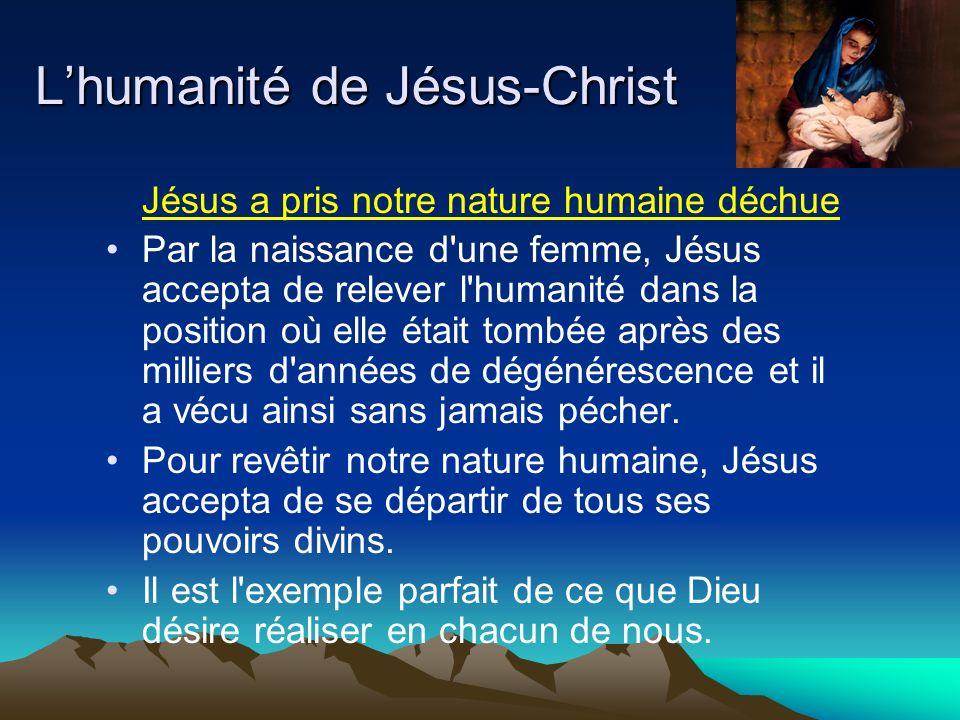 Jésus a pris notre nature humaine déchue Par la naissance d'une femme, Jésus accepta de relever l'humanité dans la position où elle était tombée après