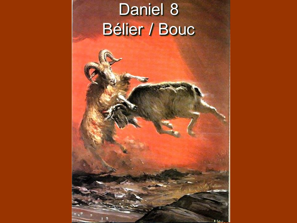 Daniel 8 Bélier / Bouc