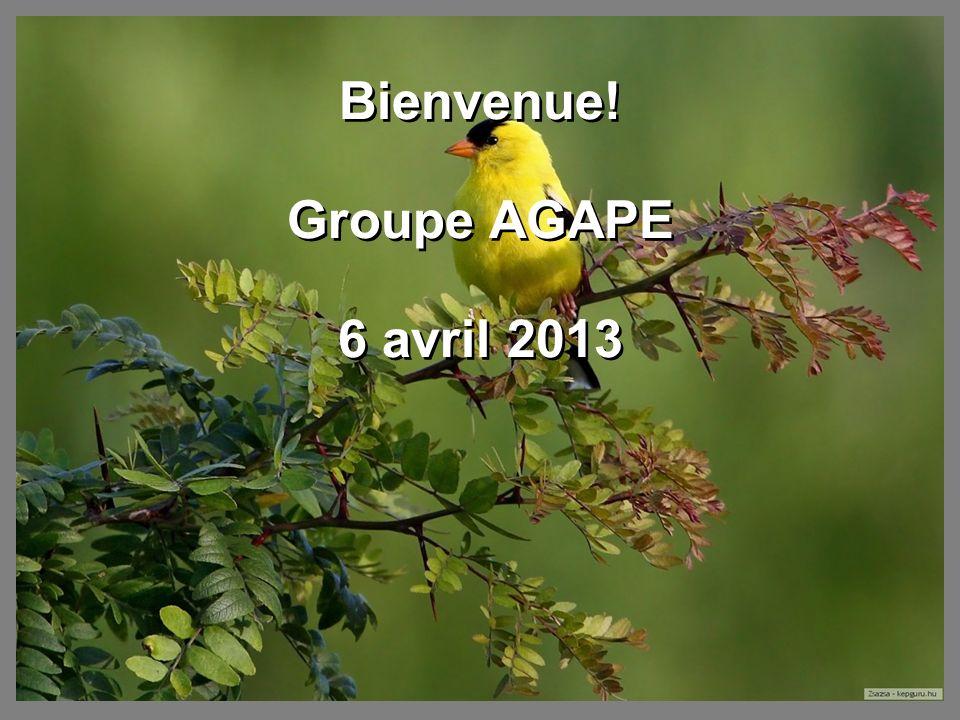 Bienvenue! Groupe AGAPE 6 avril 2013 Bienvenue! Groupe AGAPE 6 avril 2013