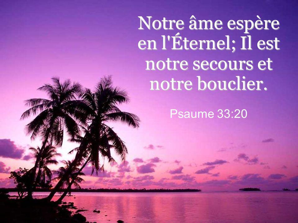 Notre âme espère en l Éternel; Il est notre secours et notre bouclier. Psaume 33:20