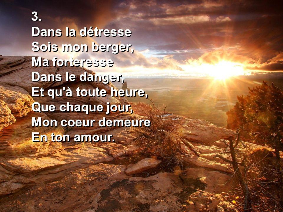 3. Dans la détresse Sois mon berger, Ma forteresse Dans le danger, Et qu'à toute heure, Que chaque jour, Mon coeur demeure En ton amour. 3. Dans la dé
