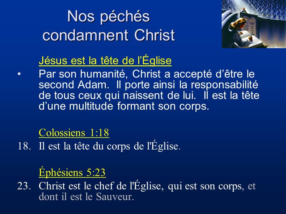 Jésus est la tête de lÉglise Par son humanité, Christ a accepté dêtre le second Adam. Il porte ainsi la responsabilité de tous ceux qui naissent de lu