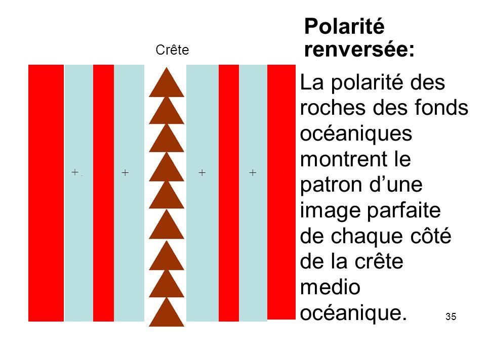 Crête - + - ++ - - + Polarité renversée: La polarité des roches des fonds océaniques montrent le patron dune image parfaite de chaque côté de la crête