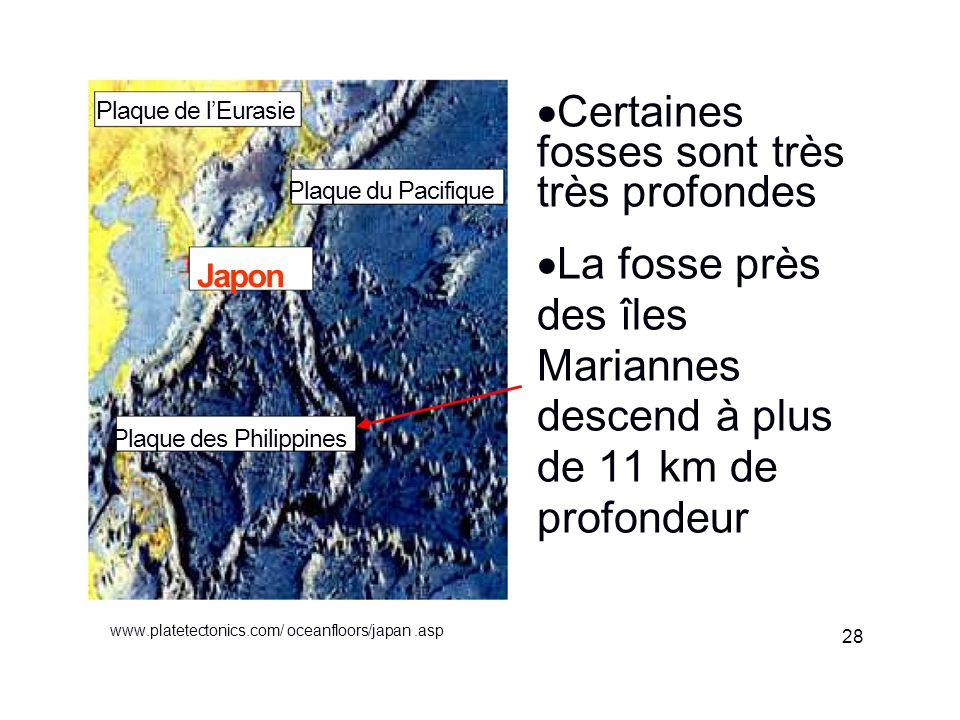 www.platetectonics.com/ oceanfloors/japan.asp Certaines fosses sont très très profondes La fosse près des îles Mariannes descend à plus de 11 km de pr