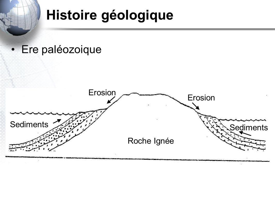 Cycle des roches MAGMA IGNÉE SEDIMENTAIRE METAMORPHIQUE Refroidit et durcit Erosion,et dépôt de sédiments Pression et chaleur Chaleur et fonte