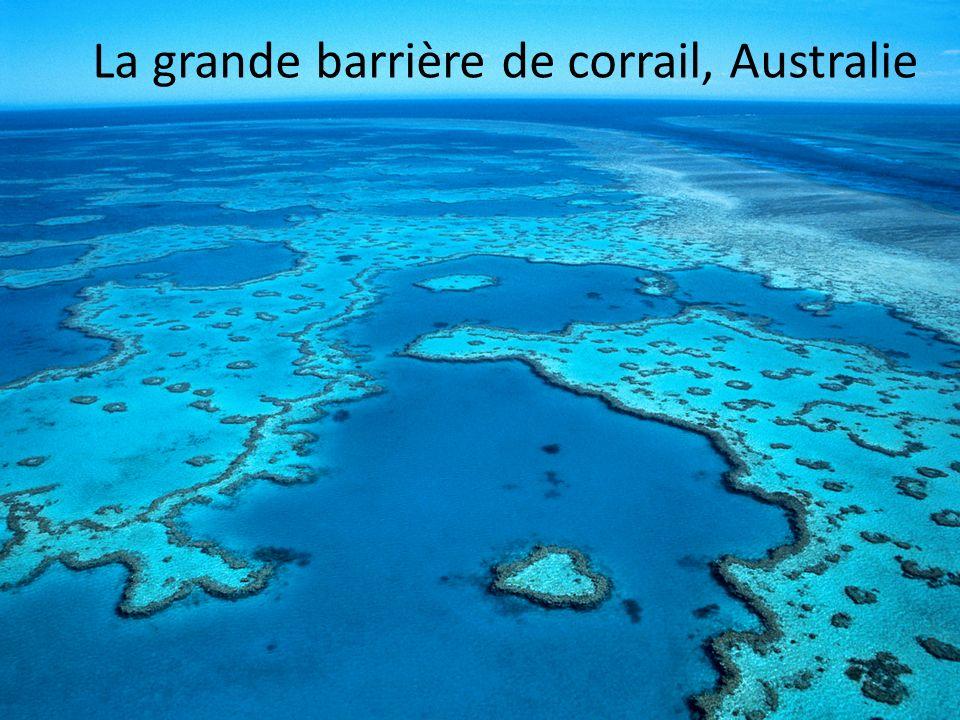 La grande barrière de corrail, Australie