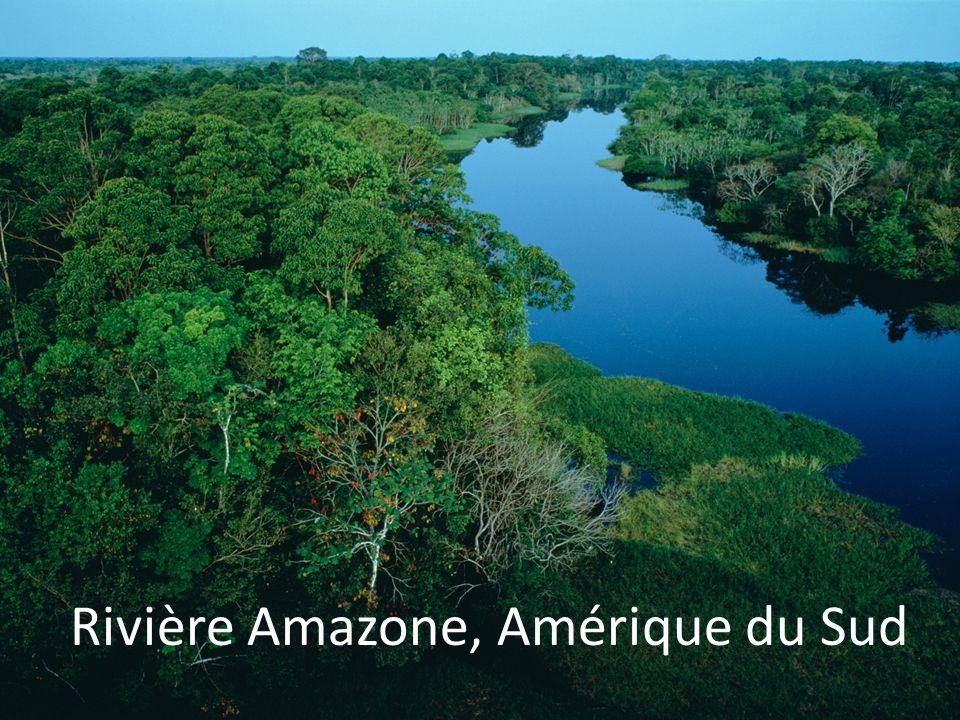 Rivière Amazone, Amérique du Sud