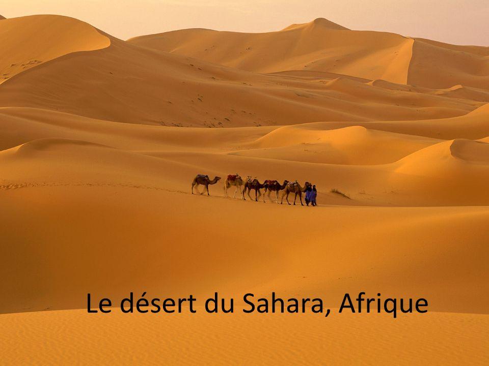 Le désert du Sahara, Afrique