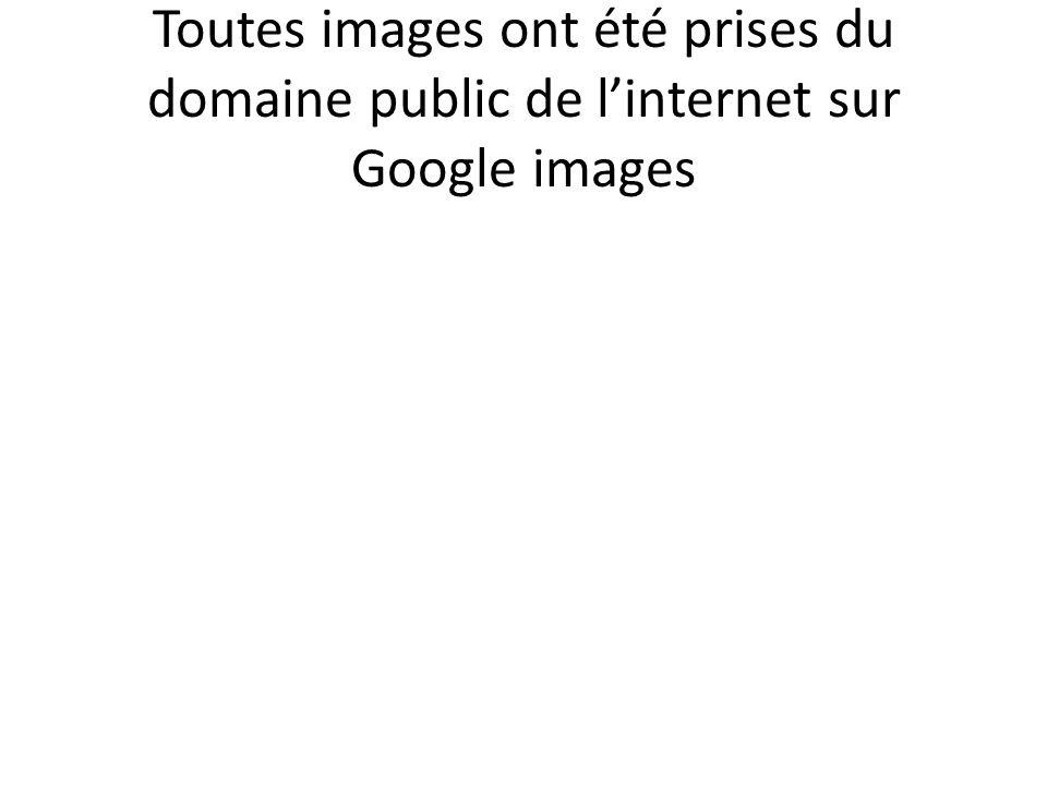 Toutes images ont été prises du domaine public de linternet sur Google images