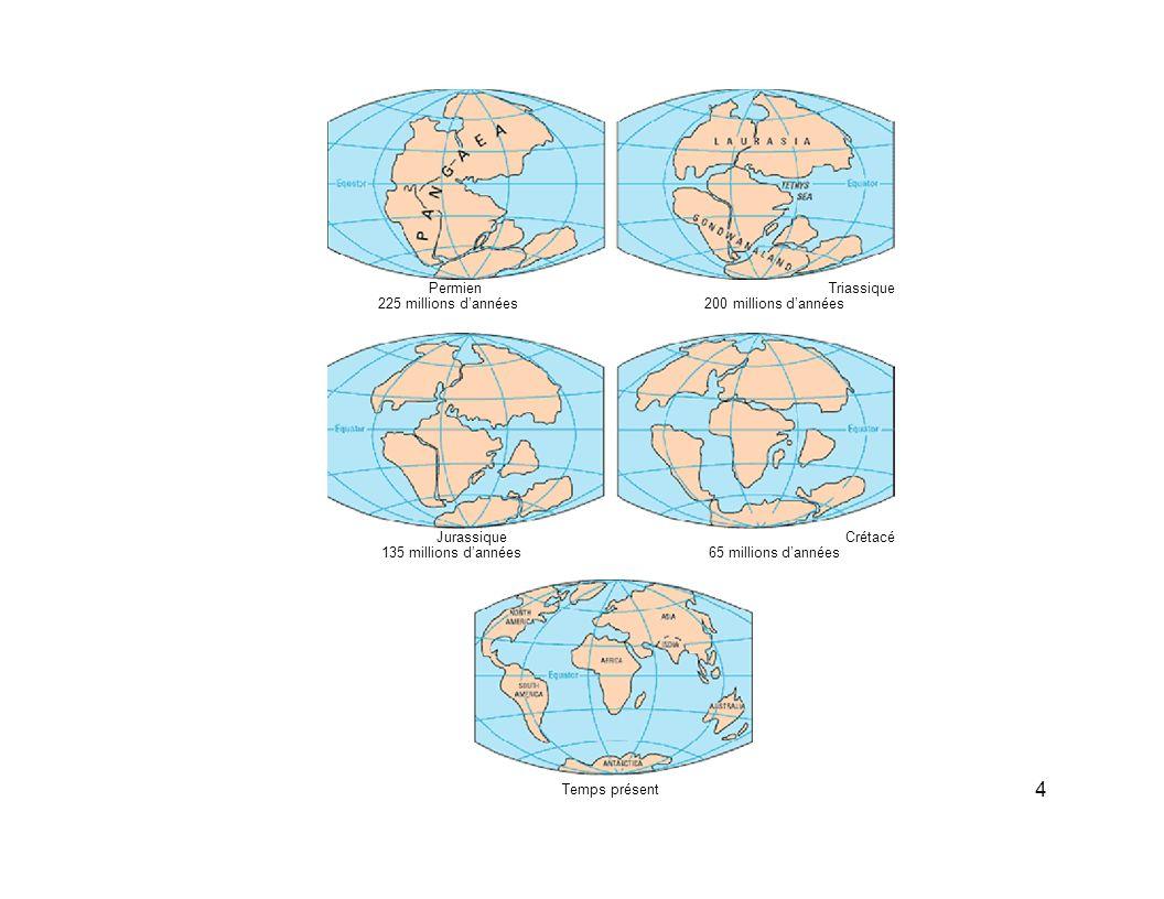 PermienTriassique 225 millions dannées200 millions dannées JurassiqueCrétacé 135 millions dannées65 millions dannées Temps présent 4