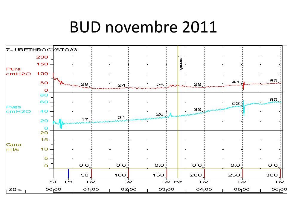 Bilan para clinique Créatinine (Jan 2011): 55µmol, clairance = 124ml/min Calendrier mictionnel: 3 à 4 sondages faits, vol max= 300cc, fuites dans peniflow: 50 à 100cc entre sondages, fuites nocturnes: 800ml.