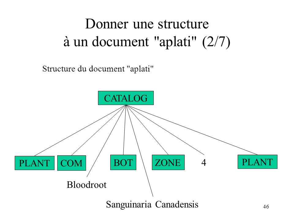 46 Donner une structure à un document