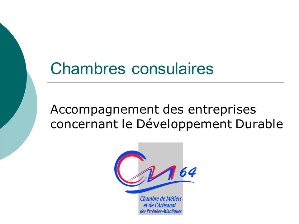 Chambres consulaires Accompagnement des entreprises concernant le Développement Durable