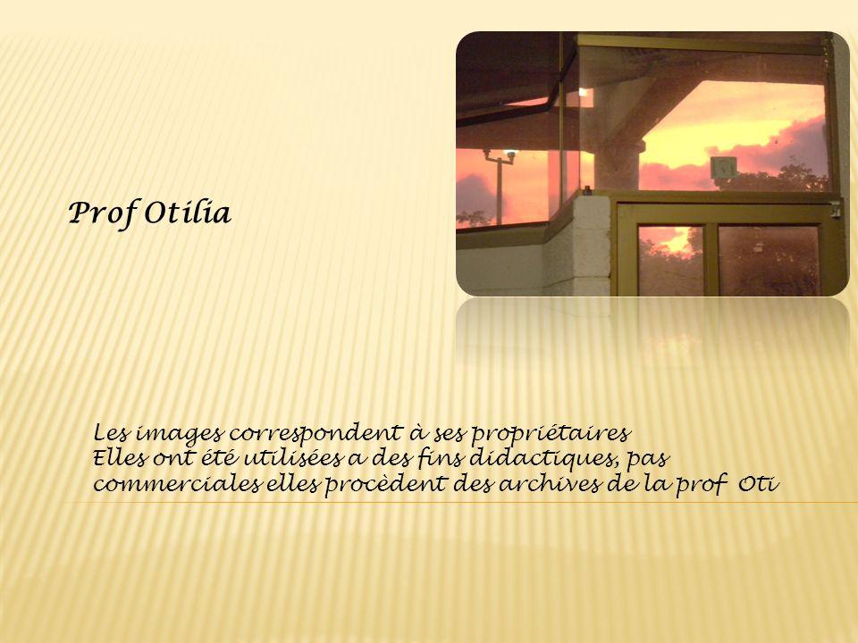 Prof Otilia Les images correspondent à ses propriétaires Elles ont été utilisées a des fins didactiques, pas commerciales elles procèdent des archives
