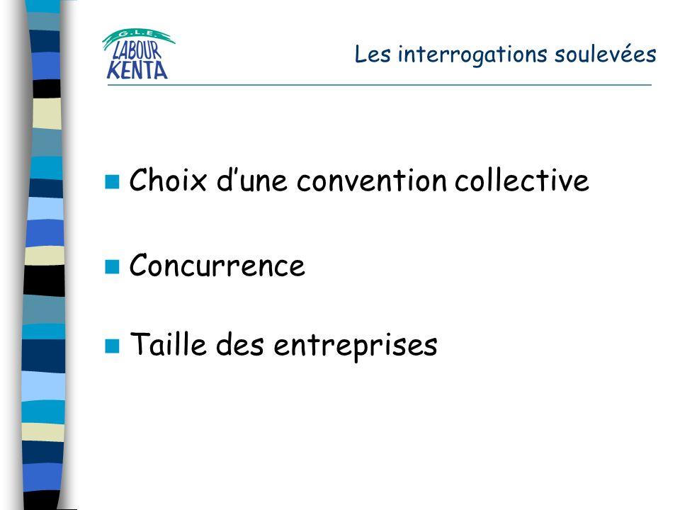 Les interrogations soulevées Choix dune convention collective Concurrence Taille des entreprises