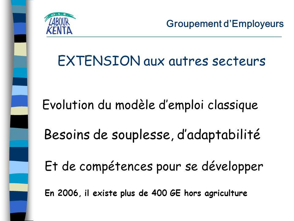 Groupement dEmployeurs Evolution du modèle demploi classique Besoins de souplesse, dadaptabilité Et de compétences pour se développer EXTENSION aux autres secteurs En 2006, il existe plus de 400 GE hors agriculture