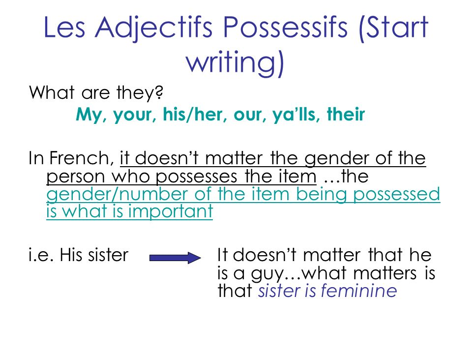 Les Adjectifs Possessifs (Start writing) What are they.
