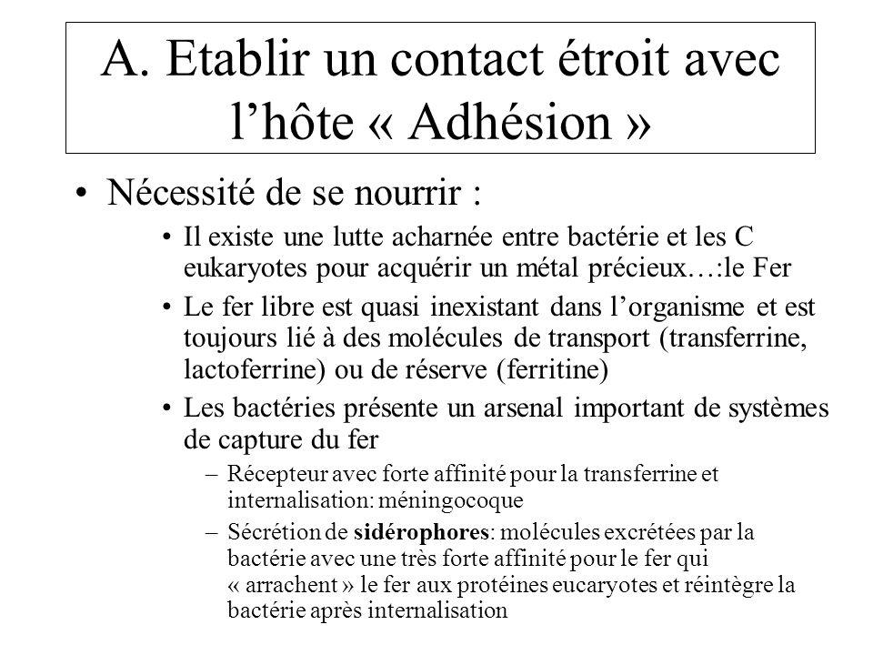 A. Etablir un contact étroit avec lhôte « Adhésion » Nécessité de se nourrir : Il existe une lutte acharnée entre bactérie et les C eukaryotes pour ac