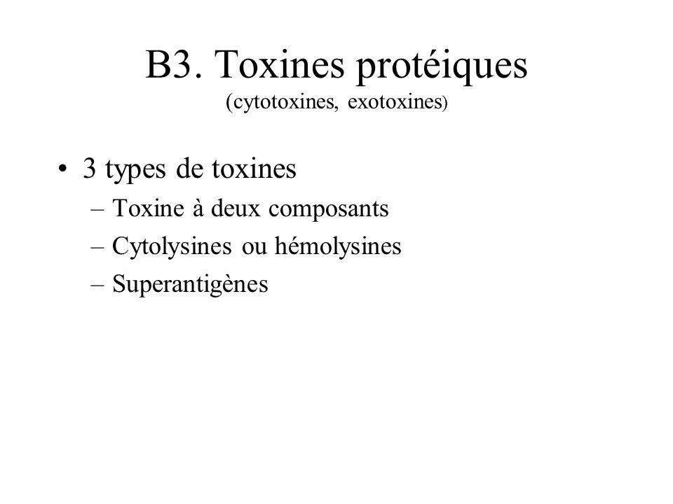 B3. Toxines protéiques (cytotoxines, exotoxines ) 3 types de toxines –Toxine à deux composants –Cytolysines ou hémolysines –Superantigènes