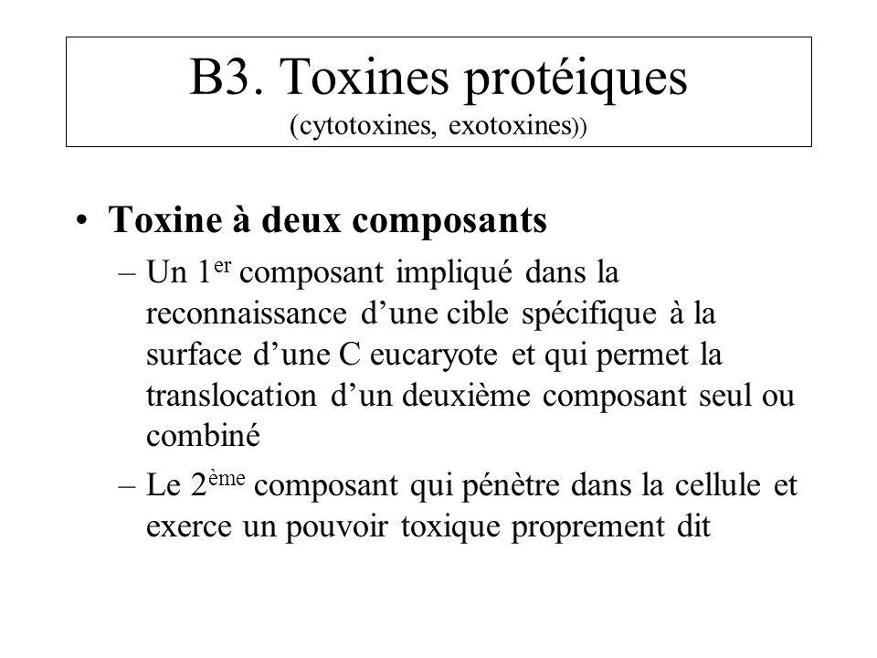 B3. Toxines protéiques (cytotoxines, exotoxines )) Toxine à deux composants –Un 1 er composant impliqué dans la reconnaissance dune cible spécifique à
