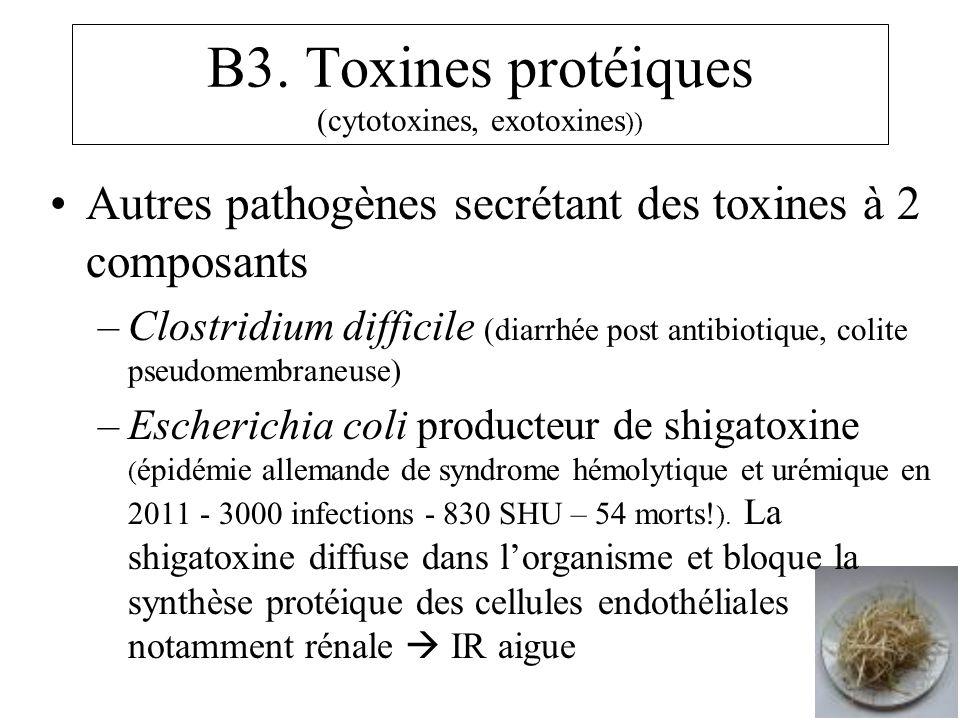 B3. Toxines protéiques (cytotoxines, exotoxines )) Autres pathogènes secrétant des toxines à 2 composants –Clostridium difficile (diarrhée post antibi
