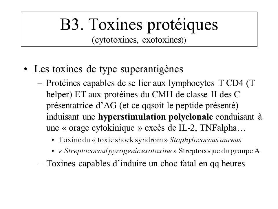 B3. Toxines protéiques (cytotoxines, exotoxines )) Les toxines de type superantigènes –Protéines capables de se lier aux lymphocytes T CD4 (T helper)
