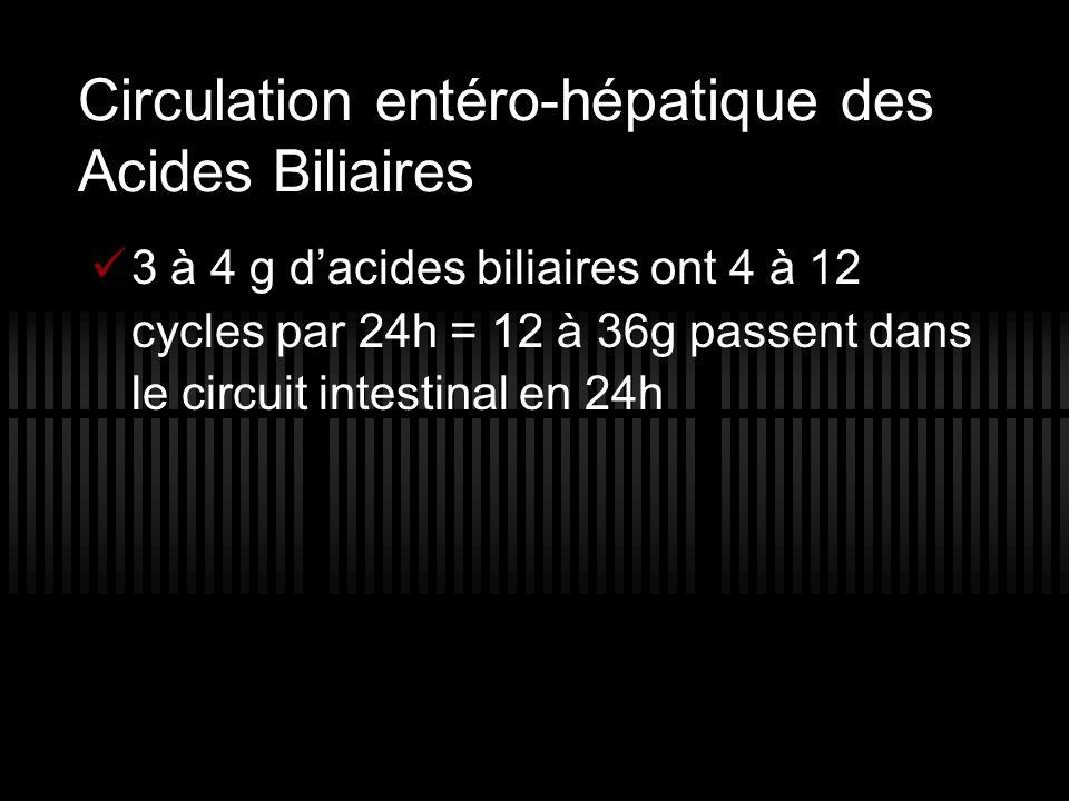 Circulation entéro-hépatique des Acides Biliaires 3 à 4 g d acides biliaires ont 4 à 12 cycles par 24h = 12 à 36g passent dans le circuit intestinal e