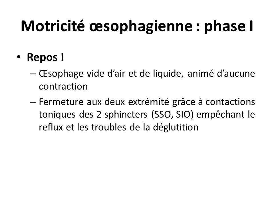 Motricité œsophagienne : phase I Repos ! – Œsophage vide dair et de liquide, animé daucune contraction – Fermeture aux deux extrémité grâce à contacti