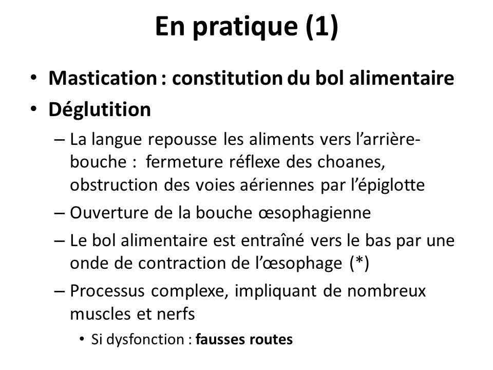 Mastication : constitution du bol alimentaire Déglutition – La langue repousse les aliments vers larrière- bouche : fermeture réflexe des choanes, obs