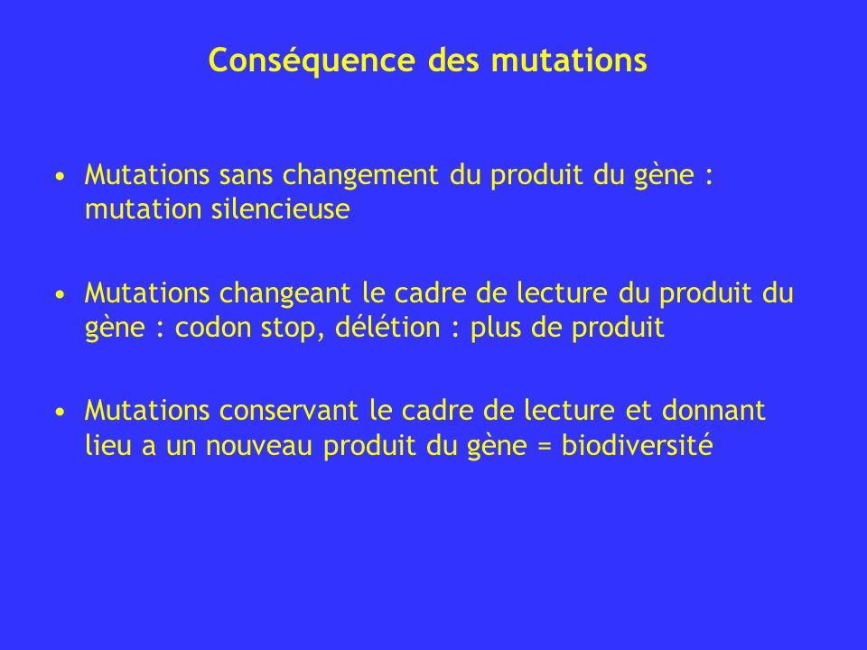 Conséquence des mutations Mutations sans changement du produit du gène : mutation silencieuse Mutations changeant le cadre de lecture du produit du gè