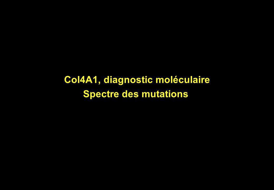 Col4A1, diagnostic moléculaire Spectre des mutations