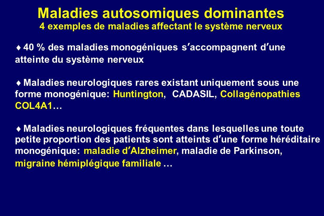 Maladies autosomiques dominantes Plan du cours Chorée de Huntington: un exemple de maladie rare autosomique dominante de ladulte appartenant au groupe des maladies à triplets Collagénopathies COL4A1: un exemple de maladie rare très variable dans son âge de début (du fetus à ladulte) et ses symptômes Maladie dAlzheimer: un exemple de maladie existant sous une forme NON monogénique FRÉQUENTE, multifactorielle et sous une forme MONOGÉNIQUE TRÈS RARE Migraine hémiplégique familiale: un autre exemple de maladie existant sous une forme sporadique, non génétique et sous une autosomique dominante très rare