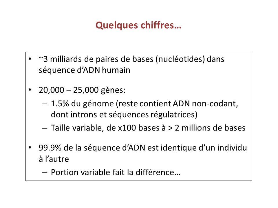Quelques chiffres… ~3 milliards de paires de bases (nucléotides) dans séquence dADN humain 20,000 – 25,000 gènes: – 1.5% du génome (reste contient ADN