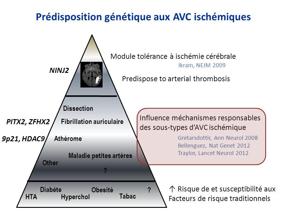 Prédisposition génétique aux AVC ischémiques Risque de et susceptibilité aux Facteurs de risque traditionnels Influence méchanismes responsables des s