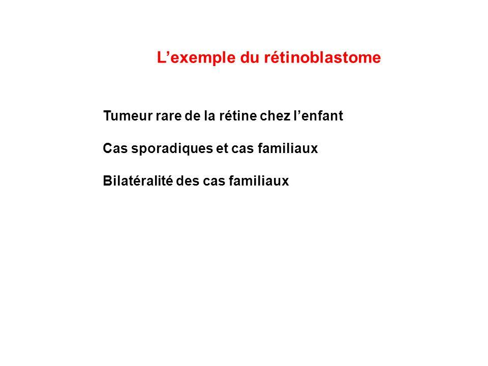 Lexemple du rétinoblastome Tumeur rare de la rétine chez lenfant Cas sporadiques et cas familiaux Bilatéralité des cas familiaux