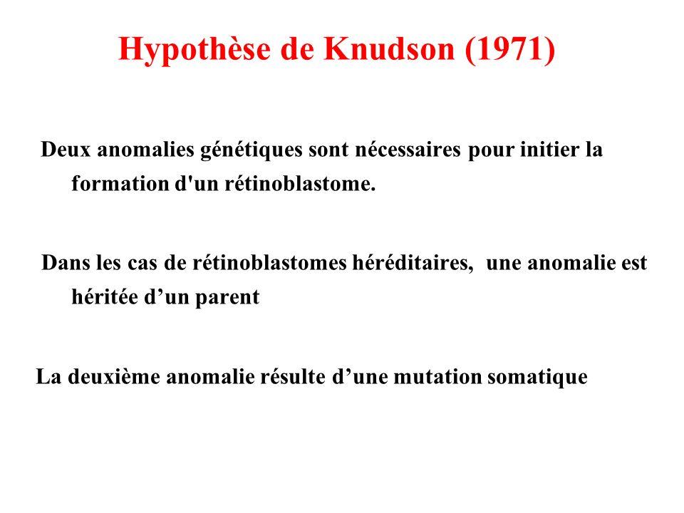 Hypothèse de Knudson (1971) Deux anomalies génétiques sont nécessaires pour initier la formation d'un rétinoblastome. Dans les cas de rétinoblastomes